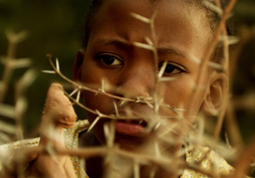 African FF: Kurzfilme 7