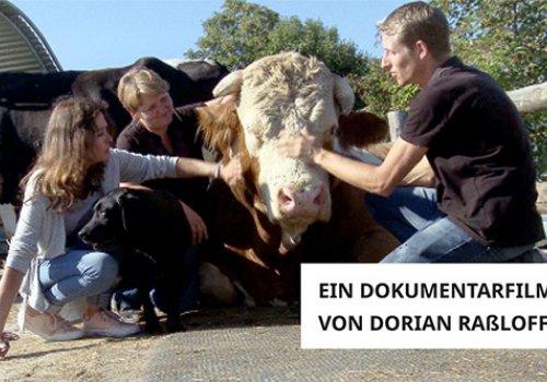 Im Licht der Hoffnung – Frieden für die Tiere!