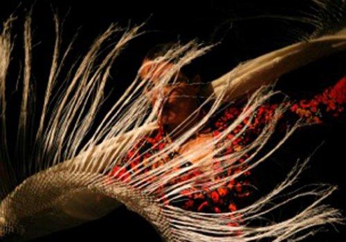 Azabache Flamenco