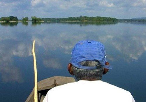 FFRB: Amazonia INC